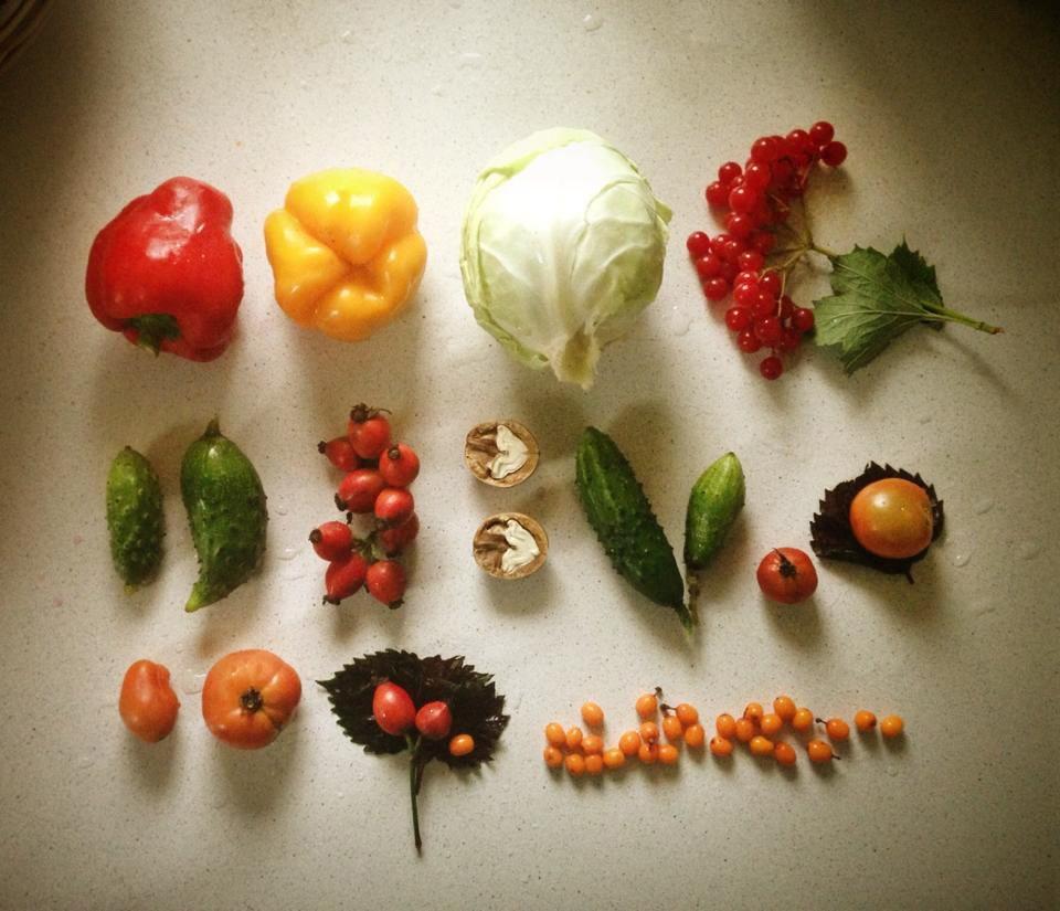 Вегетарианство. Часть 4. Зима