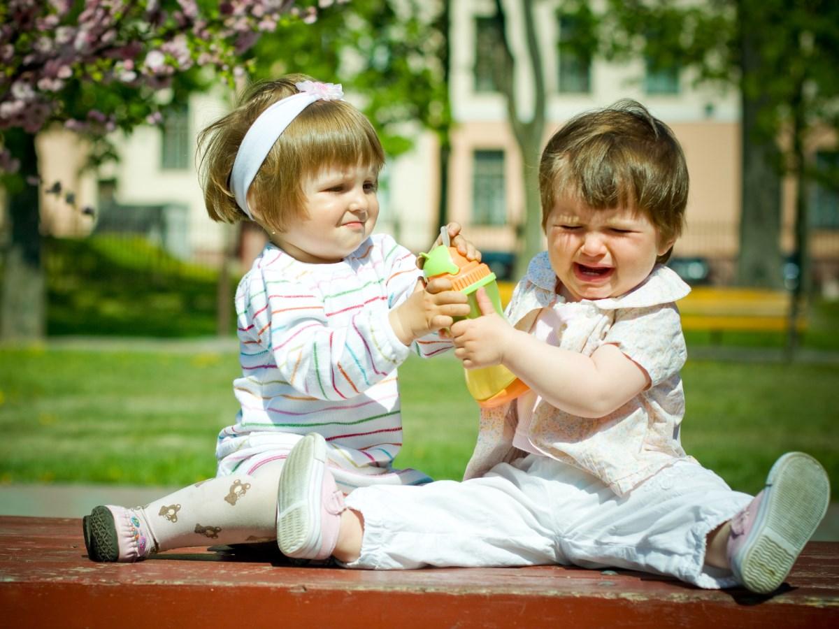 Агрессия на детской площадке. Кодекс поведения