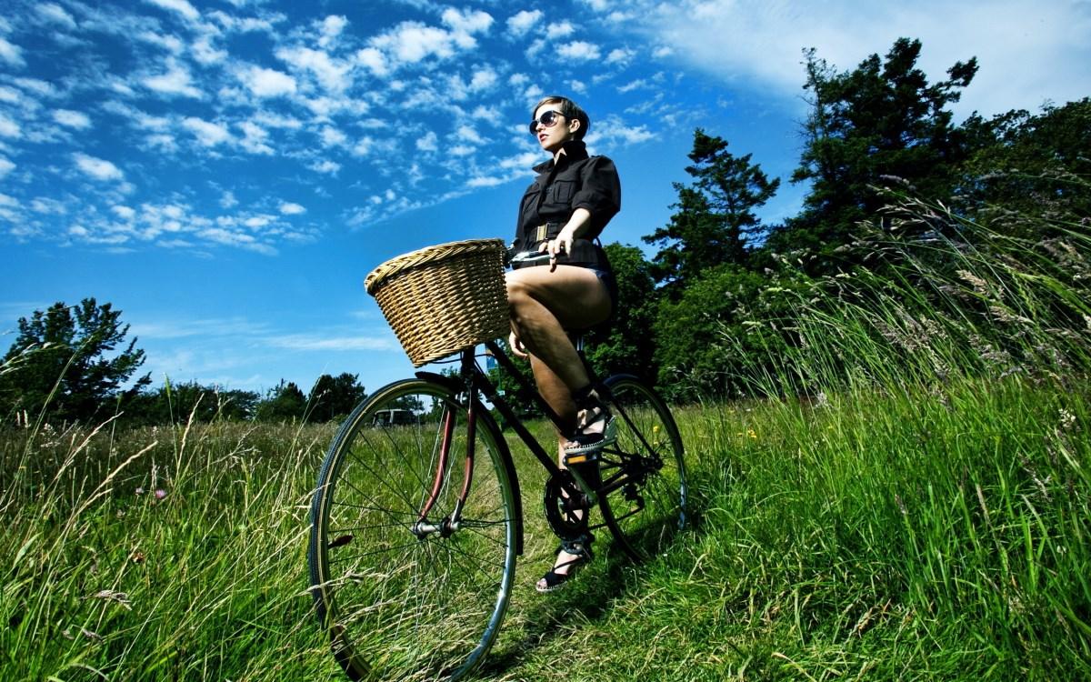 Семейный велоспорт