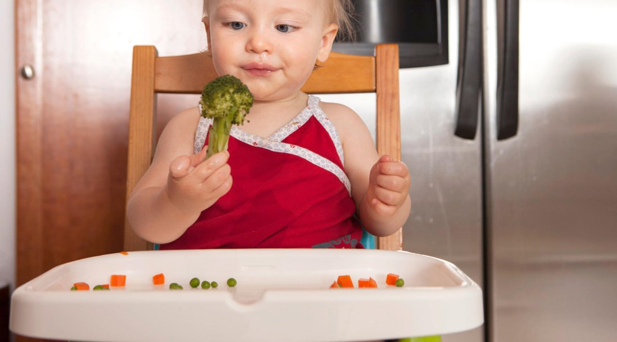 what-baby-should-eat-lunch-2160x1200