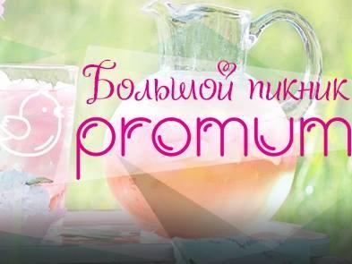 Большой пикник Promum