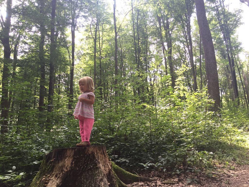 Путешествие в Карпаты с детьми. Плюсы и минусы