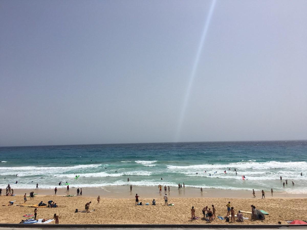 Mama goes surf! и почему стоит поехать на Канары этой осенью