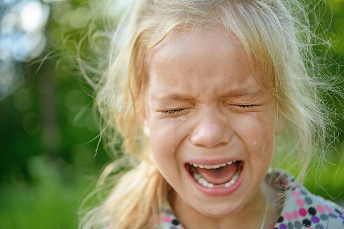 Что нужно знать об истериках ребенка