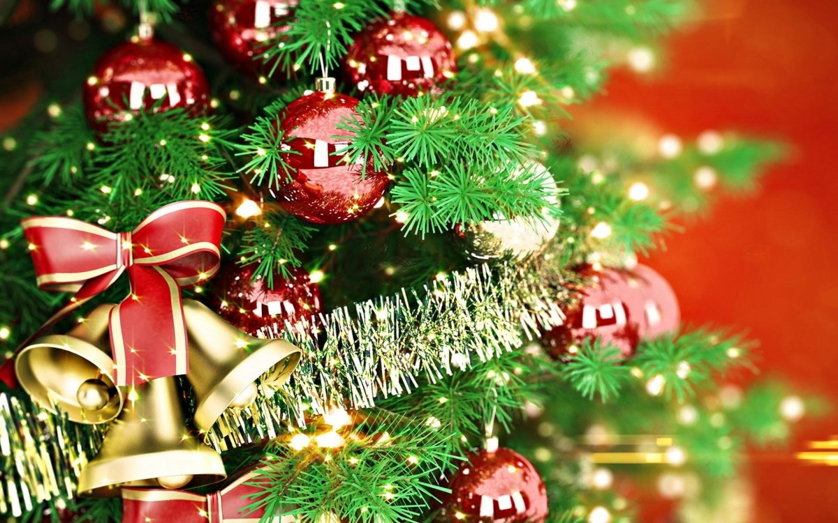 Новогодние елки Киева: куда идти с детьми