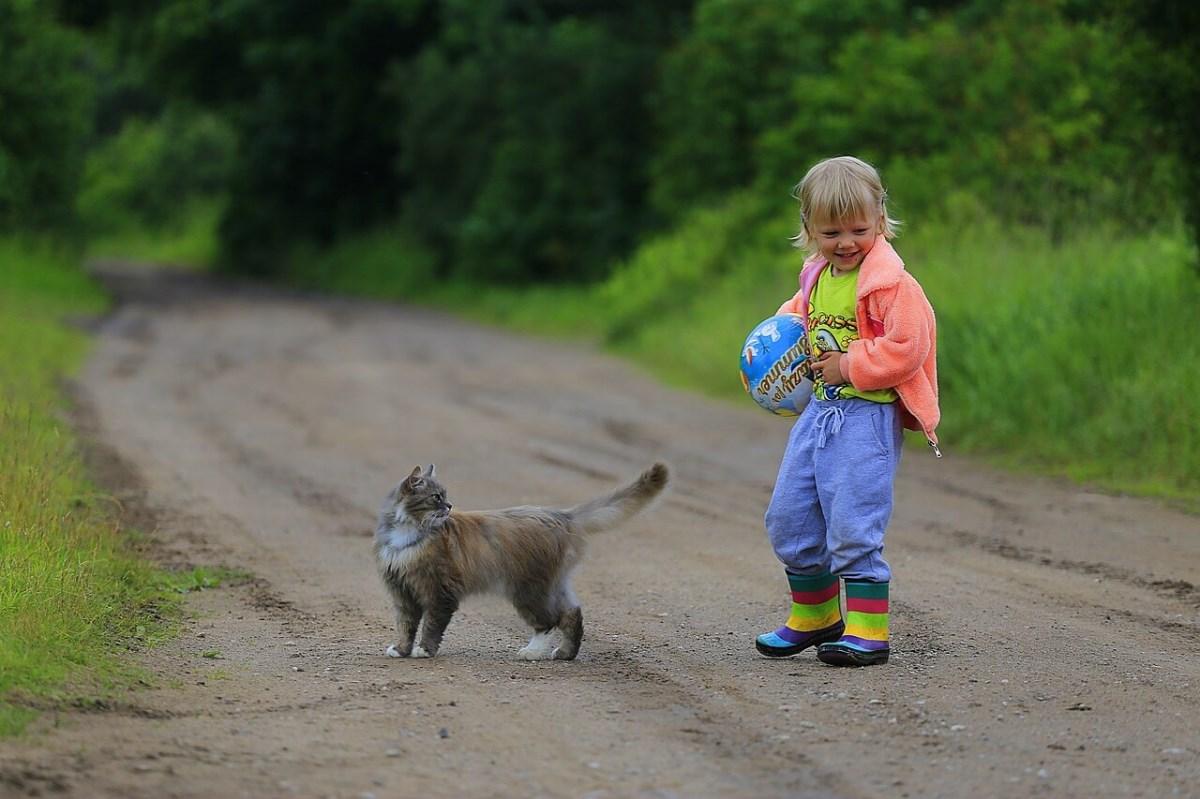 Игры для прогулки с ребенком. Проводим время с пользой