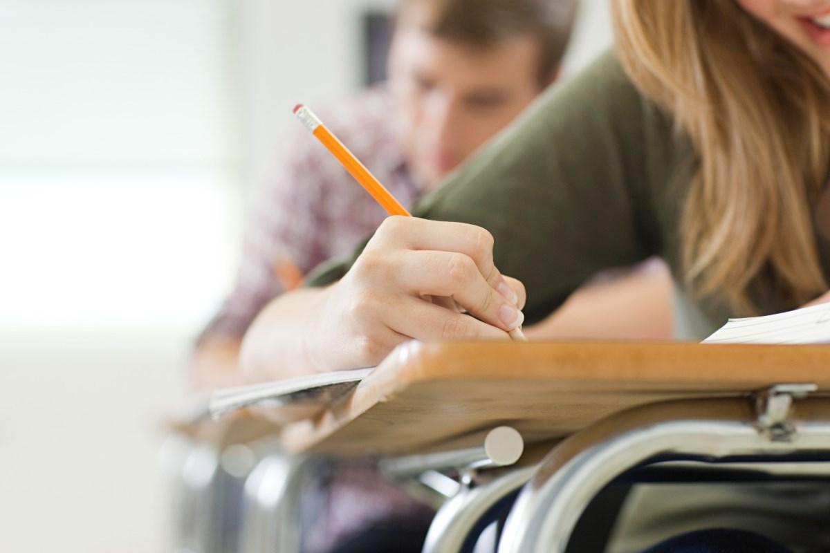 Государственная школа – это скорее место выживания, чем получения знаний