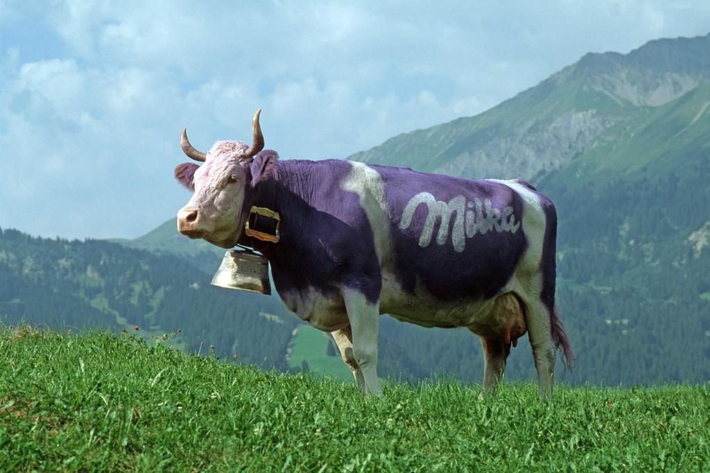 Мама, нельзя допустить, чтобы в Альпах, из-за изменения климата вымерли все фиолетовые коровы