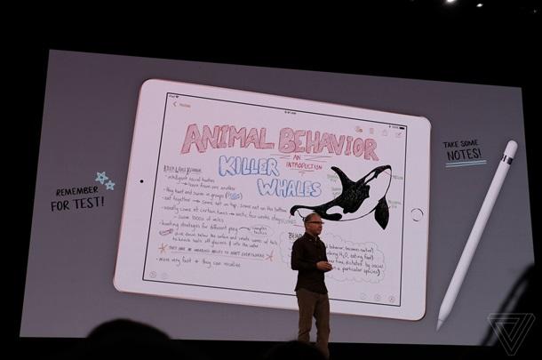 Apple разработал новый iPad для студентов и школьников