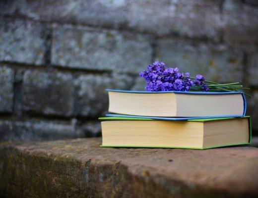 Негры, рыцарь, леди и родители: МОН показало дискриминацию в школьных учебниках