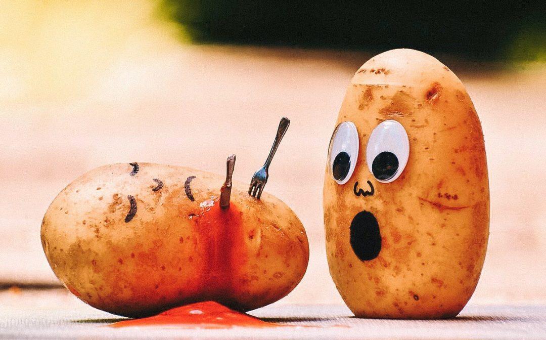 Чому я не худну: головні помилки в харчуванні та навіщо нам дієти